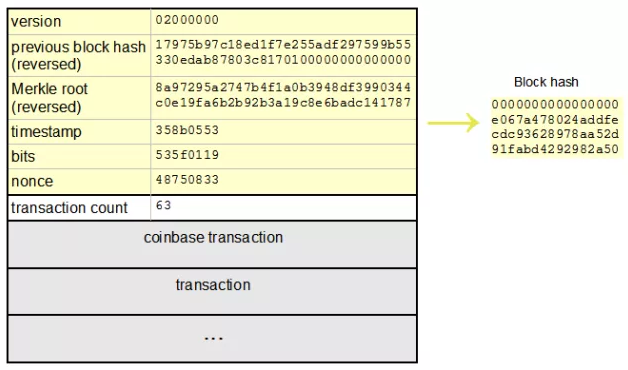 Состав Блока Bitcoin